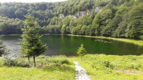 Poribljavanje Sutjeska (6)